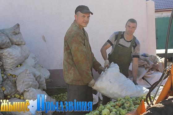 На снимке: грузчики  Владимир Бессараб и Сергей Терехов