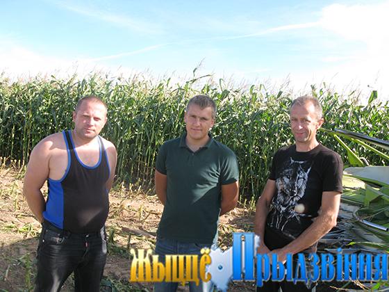 На снимке: С. Масалов, С. Козлов, О. Барковец во время уборки кукурузы возле д. Добрейка