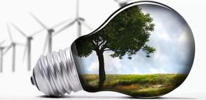 В Витебском районе уделяется пристальное внимание вопросам энергосбережения