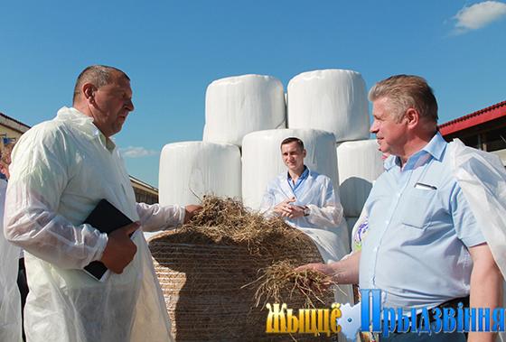 В Витебском районе с максимальной отдачей используют летне-пастбищный период содержания скота