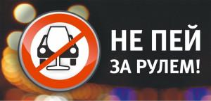 Сегодня в Витебском районе проводится Единый день безопасности дорожного движения под девизом:  «Останови пьяного водителя!»