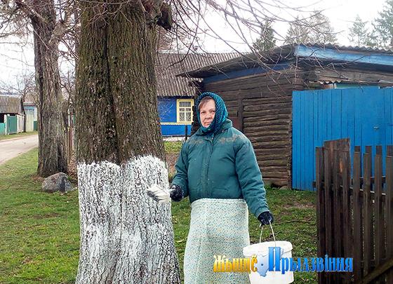 На снимке: побелку деревьев проводит Лариса Проворная.