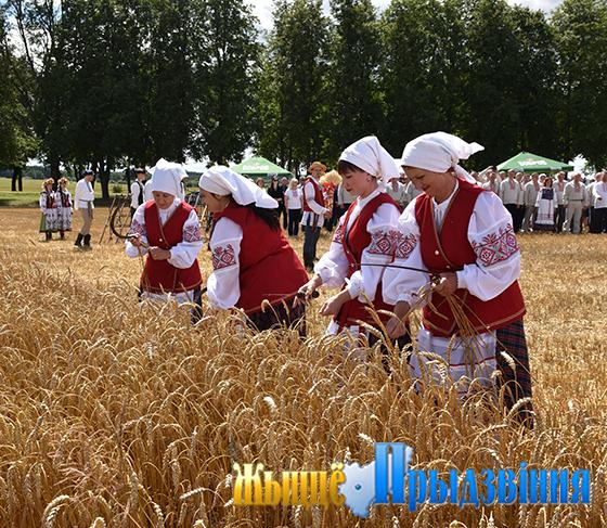 В Оршанском районе на поле сельхозпредприятия «Заднепровский» прошел областной праздник первого снопа «Зажынкі»