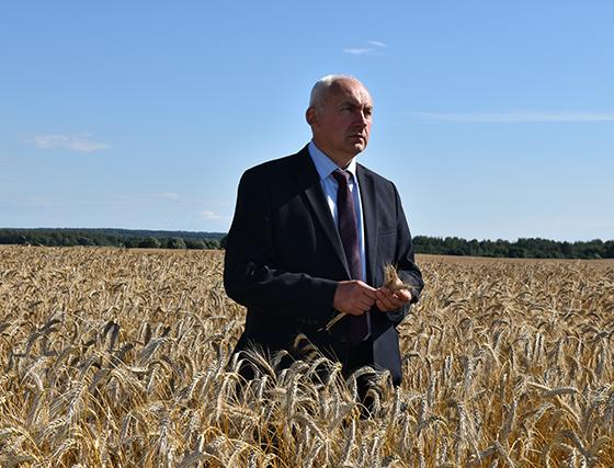 С какими итогами встречают праздник «Дажынкі-2020» хлеборобы района и как их достигли, рассказал председатель Витебского  райисполкома Геннадий Сабынич